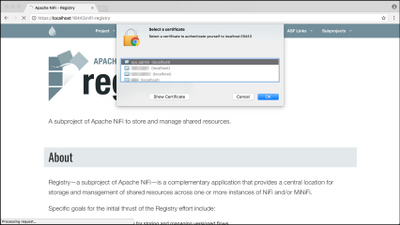 60464-2-add-cert-to-browser.png