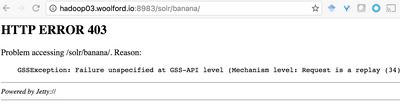 11704-solr-banana-403.png