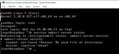 11707-ambari-server-status-2.png