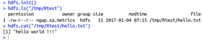 11128-read-hdfs-file.png