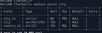 soccer_city.png