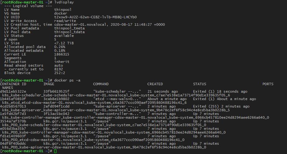 CDSW_service_lvdisplay_docker.png