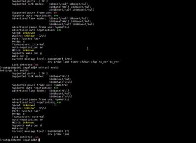 Screenshot 2020-02-05 at 13.03.41.png