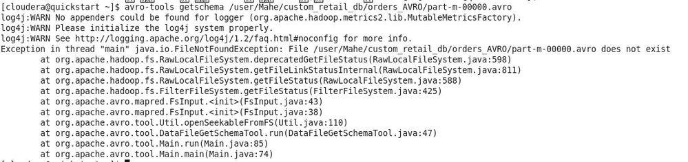 avro-file-input-data-issue.jpg