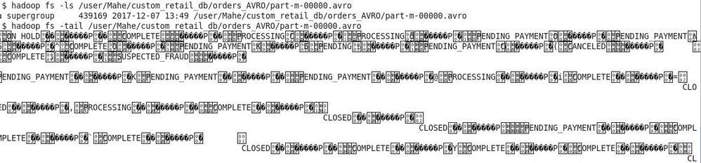 avro-file-input-data-content.jpg