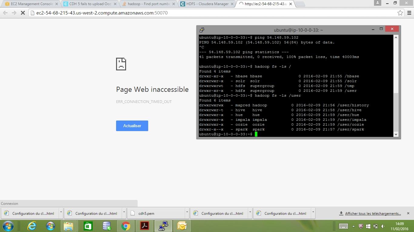 access_hdfs.jpg