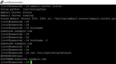 42629-screenshot-ambari-server-all-status.png