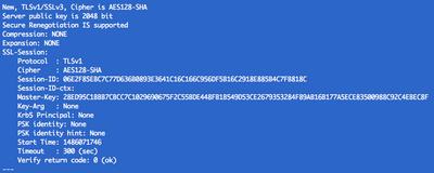12058-openssl-s-client.png