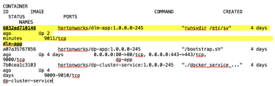 77570-docker-ps-output.png