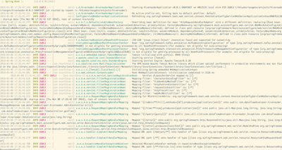 62771-springboot2running.png